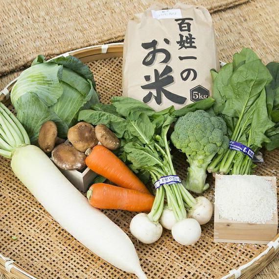 【ふるさと納税】015-050 石井町産美味しい野菜&お米(6kg)の詰め合わせセット