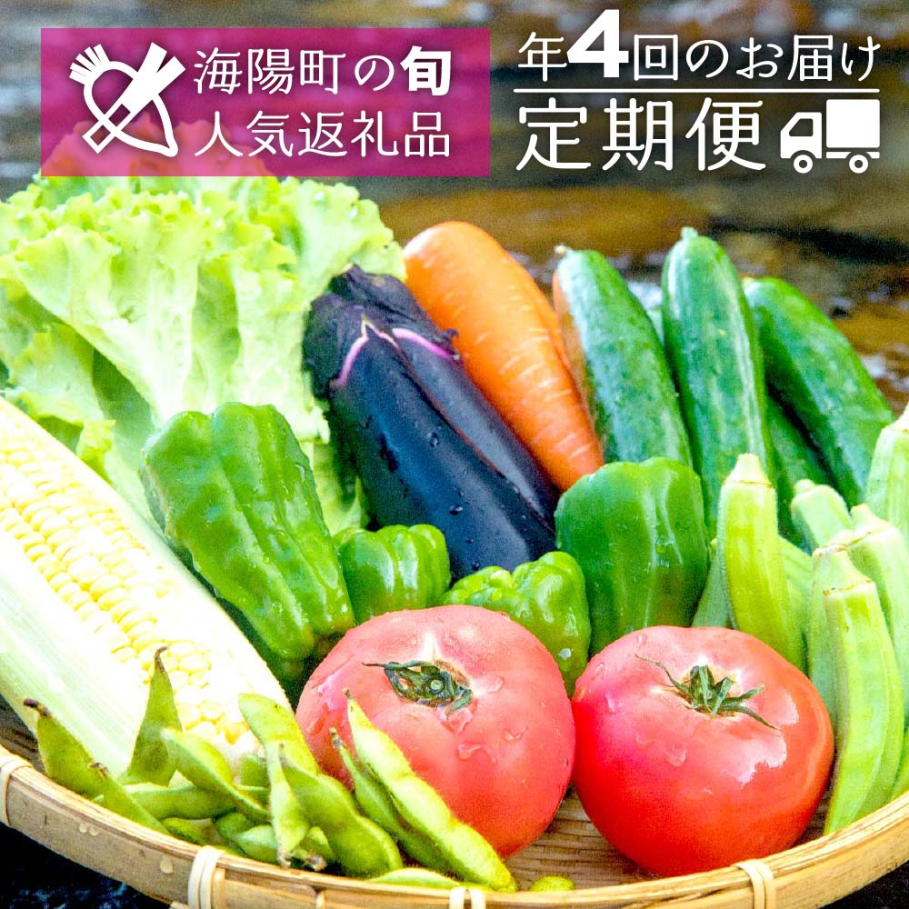 【ふるさと納税】SGN15【定期便年4回】阿波の国海陽町 旬のお野菜詰め合わせセット4-5名様以上向け