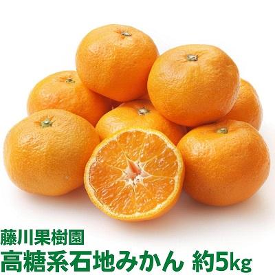 【ふるさと納税】温州みかん(石地)5kg 【果物類/みかん・柑橘類・フルーツ 】 お届け:2020年12月上旬~12月下旬