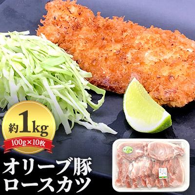 香川県観音寺市 人気 ふるさと納税 オリーブ豚ロースカツ10枚セット100g×10枚 蔵 お肉 約1kg 豚肉