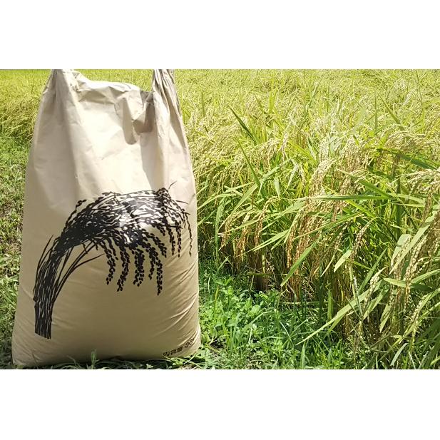 【ふるさと納税】令和2年新米「はなまる農園のコシヒカリ30kg」(玄米) 【お米・コシヒカリ・玄米】 お届け:2020年9月中旬~2021年1月下旬