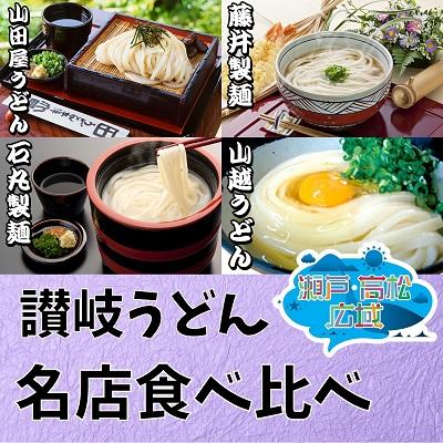 香川県東かがわ市 ふるさと納税 瀬戸 たかまつネットワーク 休み 送料無料カード決済可能 うどん食べ比べセット うどん お届け:2021年1月24日以降ご寄附 麺類 の方は3月5日より順次配送となります 入金 ウドン