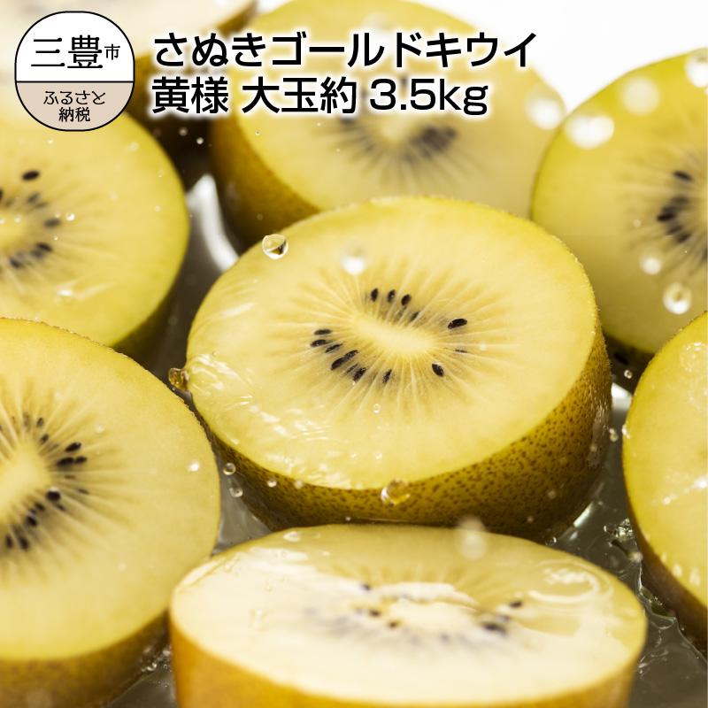 【ふるさと納税】さぬきゴールドキウイ 「黄様(おうさま)」 大玉約3.5kg