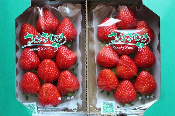 【ふるさと納税】902 YOSHIMOTO FARM~さぬきひめいちご~1.1kg