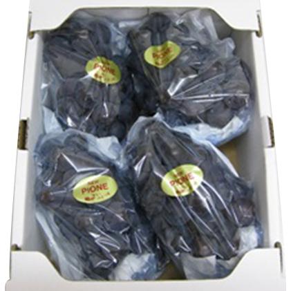 【ふるさと納税】大粒で濃厚な甘み「ピオーネ」 約2kg 【果物・ぶどう・フルーツ】 お届け:2019年7月下旬~8月下旬