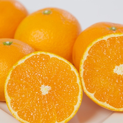 【ふるさと納税】ミヤモトオレンジガーデンの「清見」 約5kg【1044409】