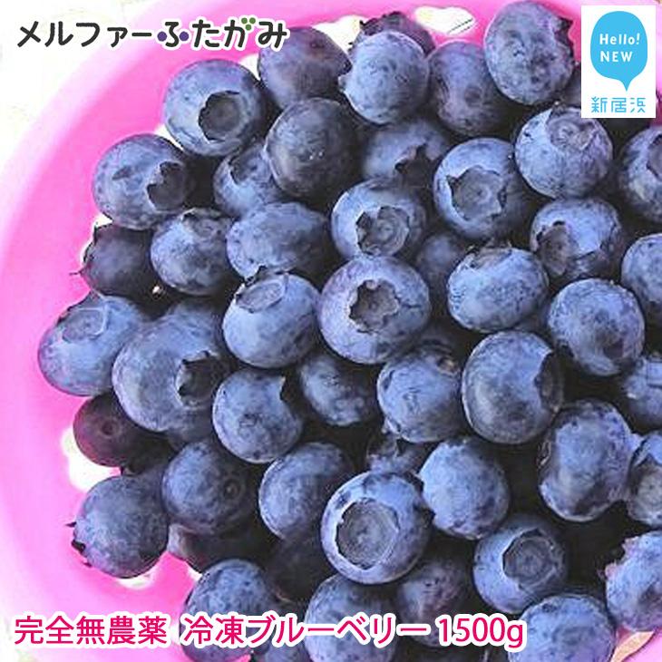 【先行予約】完全無農薬栽培 完熟ブルーベリー1500g(冷凍) 毎年人気の冷凍ブルーベリーです♪【ふるさと納税】