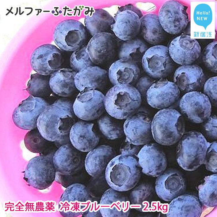 【先行予約】完全無農薬栽培 完熟ブルーベリー2.5kg(冷凍) 毎年人気の冷凍ブルーベリーです♪【ふるさと納税】