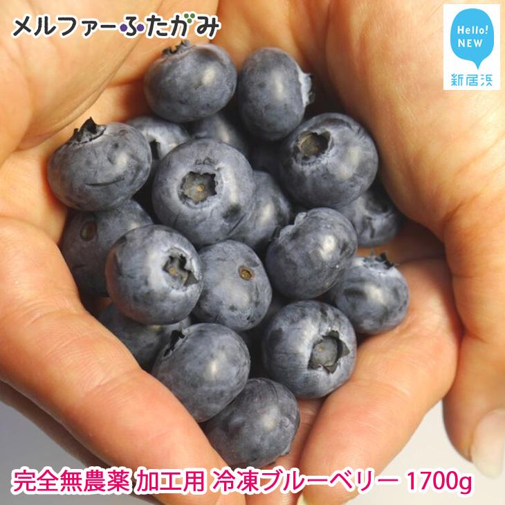 【先行予約】完全無農薬栽培 加工用完熟ブルーベリー1700g(冷凍) 保存に嬉しい冷凍でお届けします【ふるさと納税】