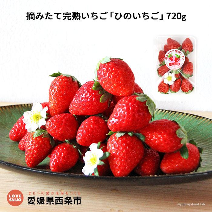 【ふるさと納税】<摘みたて完熟いちご「ひのいちご」720g(180g×4パック)> ※2020年11月~12月末迄に順次出荷します。 苺 イチゴ 愛媛県 西条市 【冷蔵】【JP】