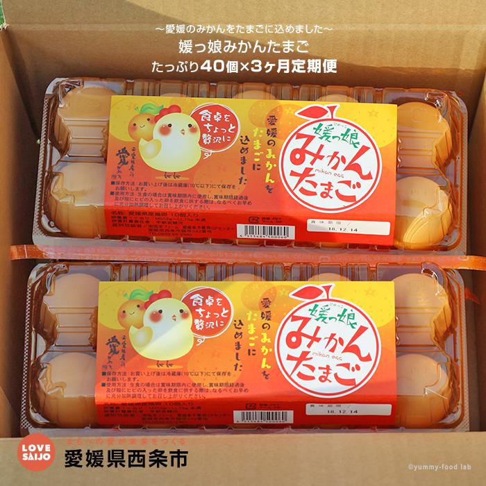 【ふるさと納税】~愛媛のみかんをたまごに込めました~<媛っ娘みかんたまご たっぷり40個×3ヶ月定期便> ※2か月以内に順次出荷します。(1回目) 卵 玉子 タマゴ 愛媛県 西条市 【冷蔵】