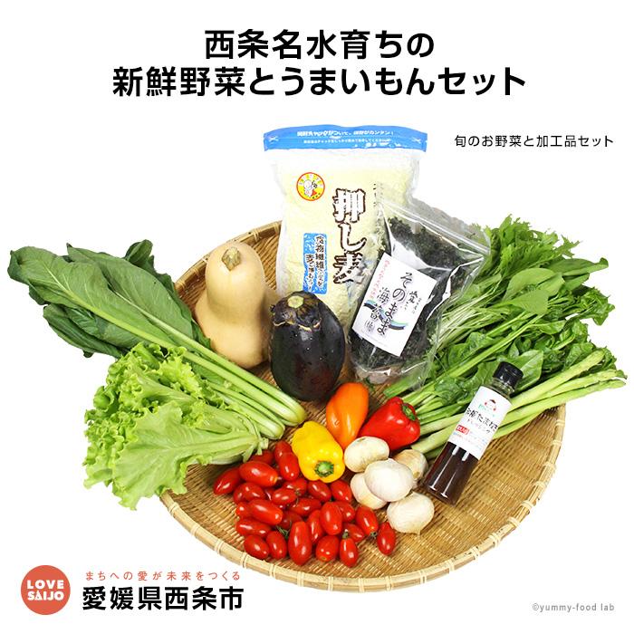 【ふるさと納税】<西条名水育ちの新鮮野菜とうまいもんセット>※1か月以内に順次出荷します。(旬のお野菜と加工品セット) やさい ドレッシング【冷蔵】【JP】