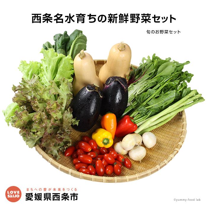 【ふるさと納税】<西条名水育ちの新鮮野菜セット>※1か月以内に順次出荷します。(旬のお野菜セット) やさい【冷蔵】【JP】