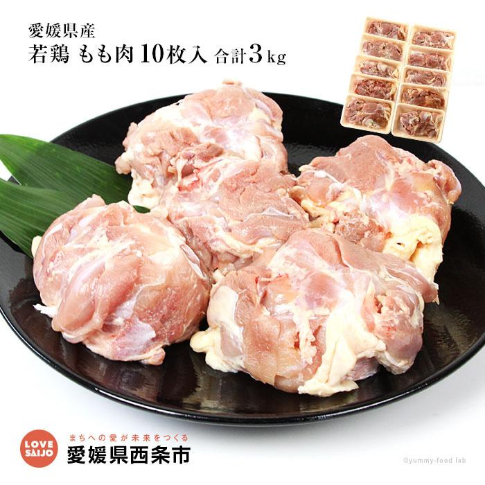 愛媛県西条市 【ふるさと納税】<愛媛県産若鶏 もも肉 特盛10枚入 ...