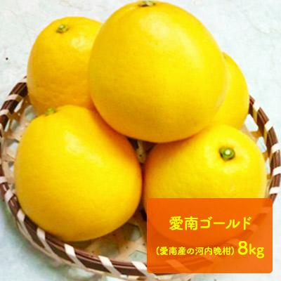 【ふるさと納税】愛南ゴールド(愛南産の河内晩柑)8kg 【果物類・柑橘類・フルーツ】 お届け:2020年5月上旬~6月下旬