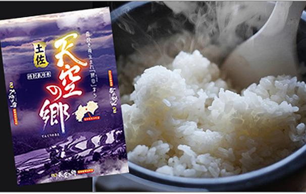 【ふるさと納税】土佐天空の郷 ヒノヒカリ(本山町) 特産品