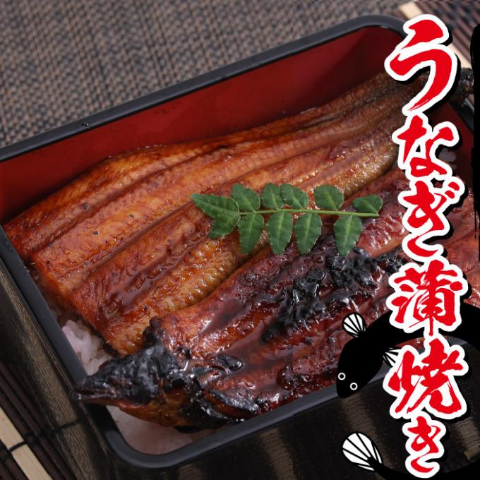 ヤマジュウ 新作通販 の職人が丁寧に焼き上げたうなぎの蒲焼き ふるさと納税 新作 厳選うなぎ3尾 魚 YJ024 加工品 蒲焼き 送料無料 冷凍