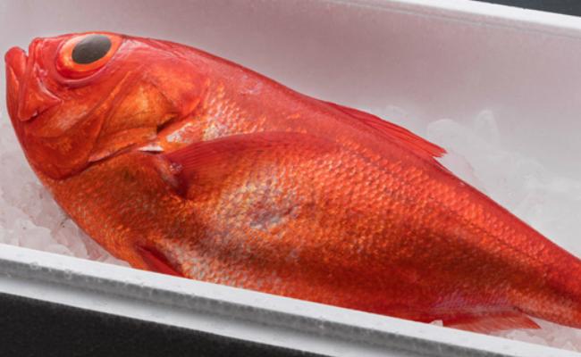 【ふるさと納税】NK003まるごと3匹!金目鯛<魚 魚介類 鮮魚 金目鯛 キンメダイ>