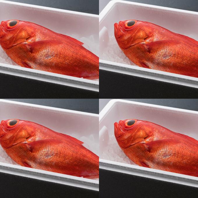 【ふるさと納税】NK004まるごと4匹!金目鯛<魚 魚介類 鮮魚 金目鯛 キンメダイ>