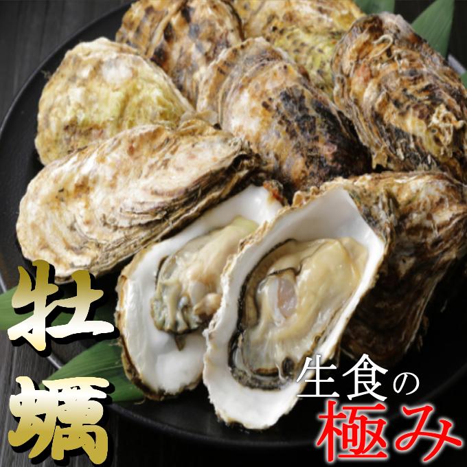 【ふるさと納税】AK015殻付き牡蠣旅する牡蠣プレミアムオイスター室戸海洋深層水室津12〜15個入り