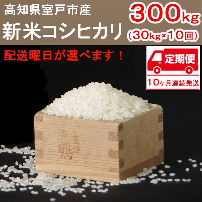 【ふるさと納税】新米コシヒカリ30kg×10ヶ月白米定期便合計300kg令和2年度室戸産送料無料<TA021>