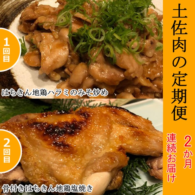 【ふるさと納税】SZ029土佐肉の定期便2回連続お届け