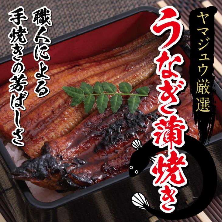 【ふるさと納税】厳選うなぎ3尾 ヤマジュウ 魚 蒲焼き 加工品 冷凍 送料無料 <YJ024>