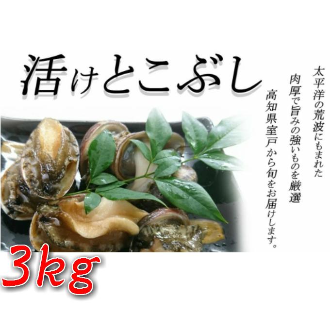 【ふるさと納税】UO007活けとこぶし【3kg】