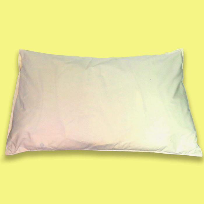 【ふるさと納税】国産ひのきとそば殻の有機枕とオーガニック綿毛布セット 安眠 熟睡 ヒノキ ソバ殻 毛布 冷え 送料無料