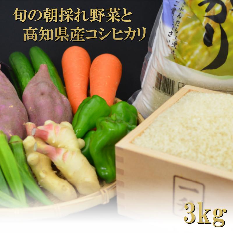 【ふるさと納税】【3ヶ月定期便】とれたて新鮮!旬の朝採れ野菜と高知県産コシヒカリ3kgセット お楽しみ 送料無料