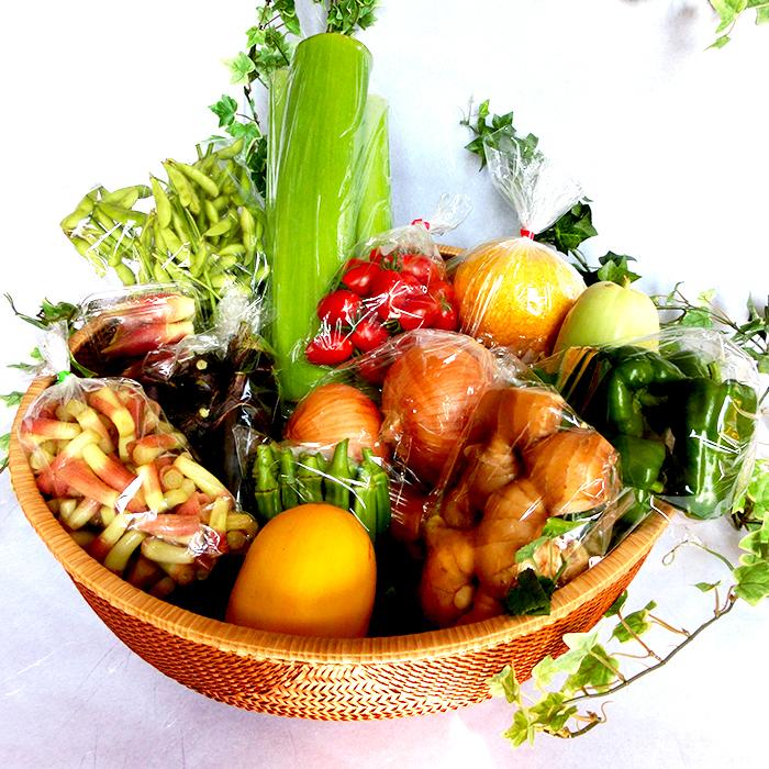 【ふるさと納税】高知県須崎市産!旬の野菜・果物セット