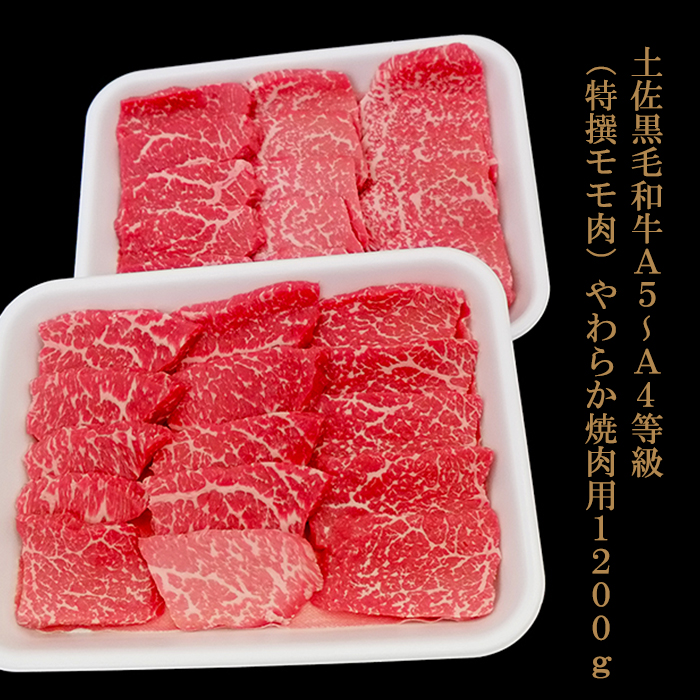 【ふるさと納税】土佐黒毛和牛A5~A4等級(特撰モモ肉)やわらか焼肉用600g×2