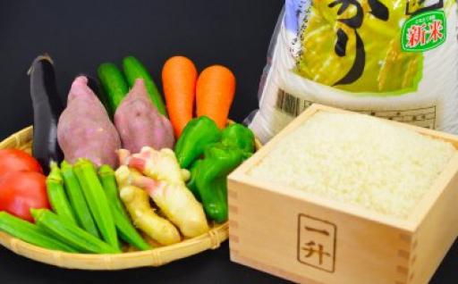 【ふるさと納税】(一年間連続お届け)とれたて新鮮!旬の朝採れ野菜と高知県産コシヒカリ5kg