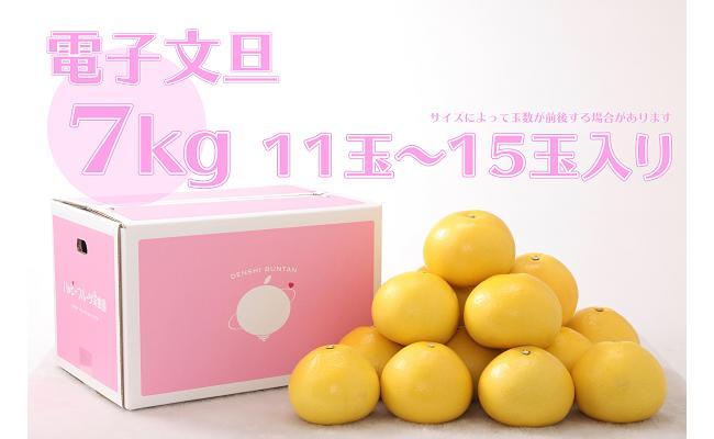 【ふるさと納税】電子文旦7kg