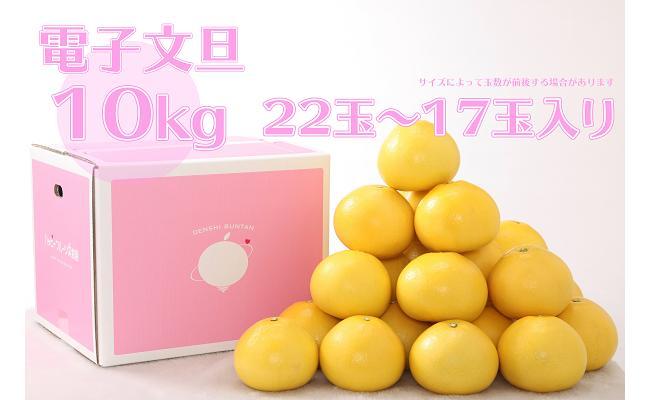 【ふるさと納税】電子文旦10kg
