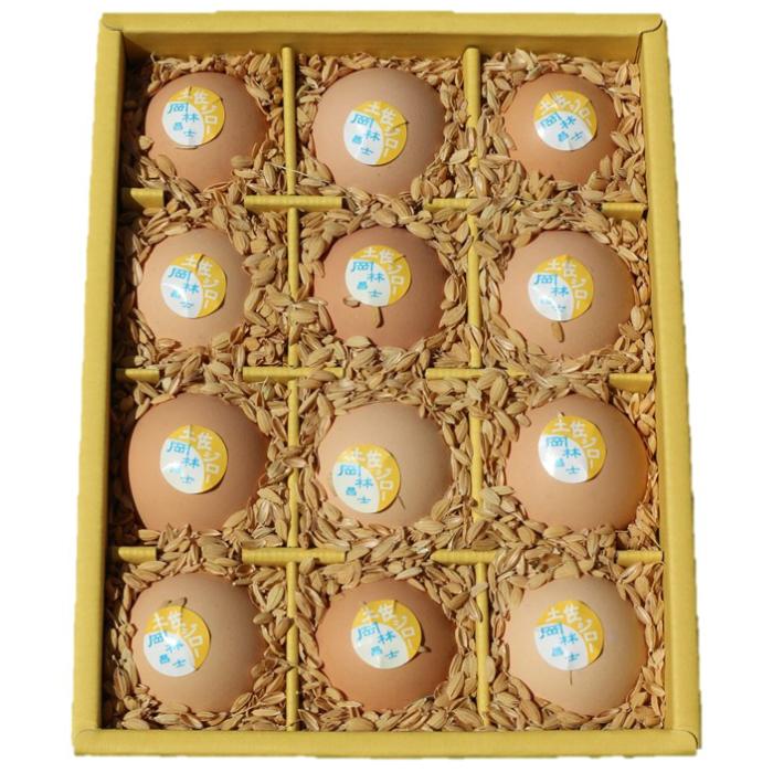 【ふるさと納税】【N-17】ましくんの完全放し飼い土佐ジローの卵(12個入り×2箱)
