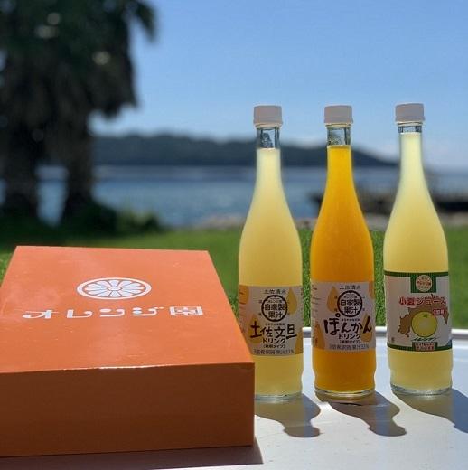 【ふるさと納税】【【B-85】自家製かんきつ果汁飲料(希釈用)3本セット