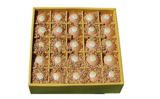 【ふるさと納税】【BF-2】ましくんの完全放し飼い土佐ジローの卵(25個入り×2箱)