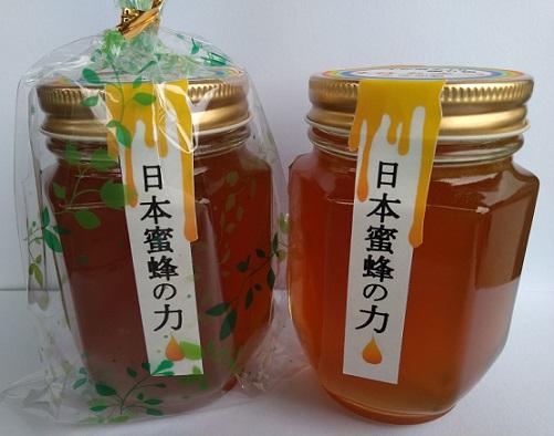 【ふるさと納税】【H-35】日本蜜蜂の力 生はちみつ2本セット