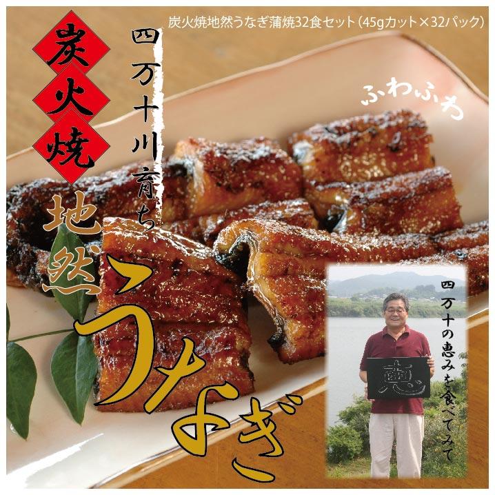 【ふるさと納税】19-244.川漁師の店「四万十屋」の炭火焼地然うなぎ蒲焼32食セット(タレ付き)