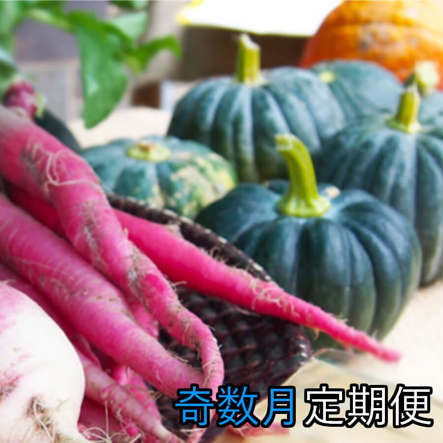 【ふるさと納税】野菜★奇数月定期便 香南市のお野菜詰め合わせコース【送料無料】
