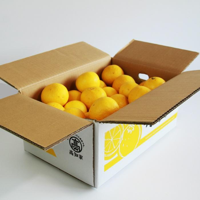 日当たりのよい山頂の小夏園 排水対策をして味の密度を高めました おいしく食べていただくために 樹で完熟させてお届けします ふるさと納税 訳あり品送料無料 土佐の高知のくだもの畑 プレゼント ハウス小夏 ギフト用 5Kg 贈り物 C-126 柑橘 のし フルーツ 期間限定配送 ニューサマーオレンジ配送日指定不可 デザート送料無料