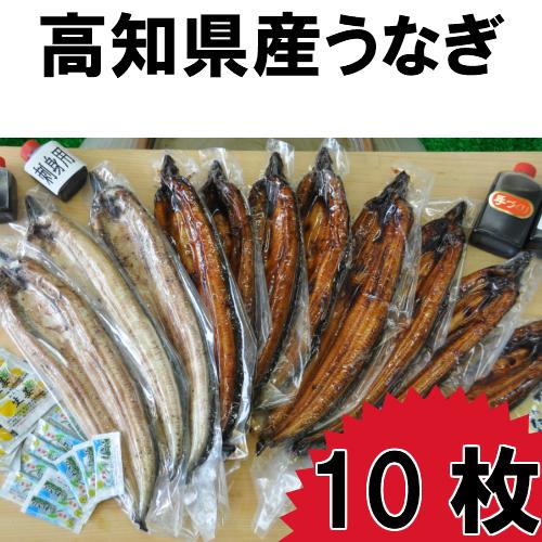 【ふるさと納税】高知県産うなぎの蒲焼き7枚 白焼き3枚 特製かば焼きのタレ 山椒 付き