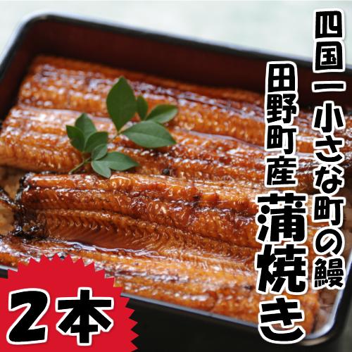 【ふるさと納税】~冷凍~ 四国一小さなまち田野町産うなぎの蒲焼き2本入り+特製ダレ+山椒付き