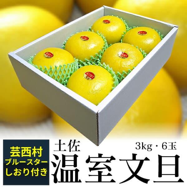 【ふるさと納税】高知産 温室文旦3kg・6玉入【s-kensyo】
