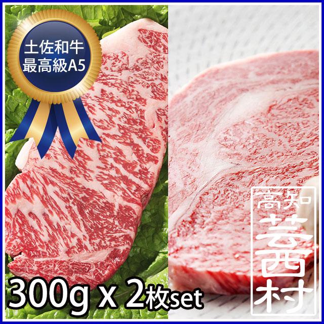 【ふるさと納税】 肉 牛 ステーキ土佐 和牛 A5 特選 サーロイン & リブロース ステーキ300g×2枚セット牛肉 ステーキ肉 A5 最高級ランク steak beef 特産品 高知県産 ギフト【SaNeYam】(新)