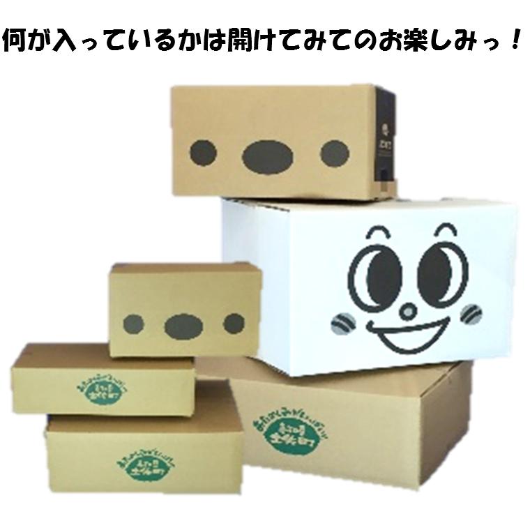 【ふるさと納税】セレクトBOX-C, 路地裏玩具店:a66299fe --- officewill.xsrv.jp