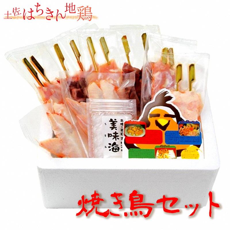 【ふるさと納税】はちきん地鶏焼き鳥セット!【送料無料】お子さんやお年寄も安心のやわらか地鶏!