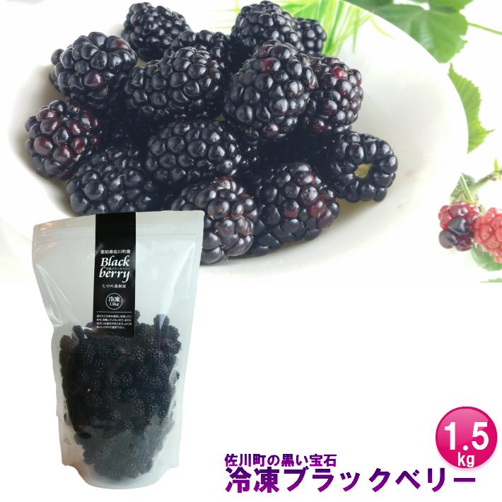 【ふるさと納税】<冷凍ブラックベリー1.5kg> 高知県 佐川町 ヒロの果樹園【冷凍】