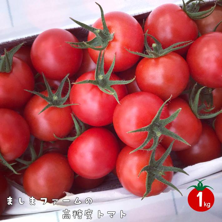 【ふるさと納税】<アイメック🄬で育てたましまファームの高糖度トマト】>高知県 佐川町 ましまファーム フルティカ ミニトマト フルーツトマト 約1kg 入金確認後、随時発送【常温】送料無料